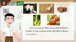 สื่อการเรียนการสอน บทอ่านเสริมเติมความรู้เรื่อง จีเอ็มโอ ชีวิตสายพันธ์ใหม่ ป.6 ภาษาไทย