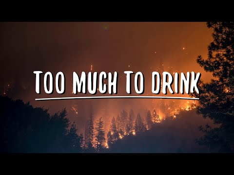 Anth - Too Much To Drink (Lyrics)