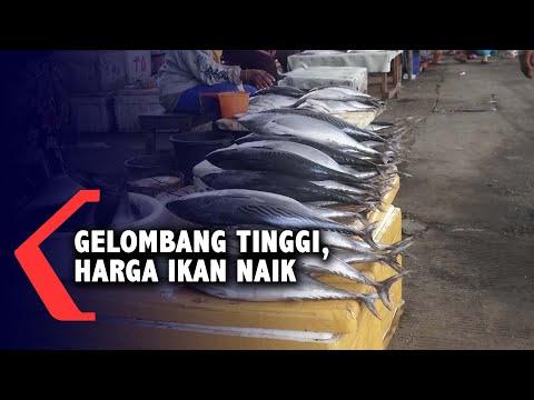 Gelombang Tinggi, Nelayan Tak Melaut, Harga Ikan Naik