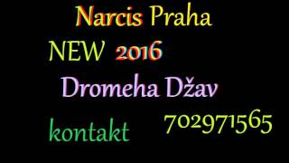 Narcis Praha_New___2016 * dromeha Džav