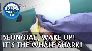 Seungjae, wake up! It's the whale shark! [The Return of Superman/2018.09.30]