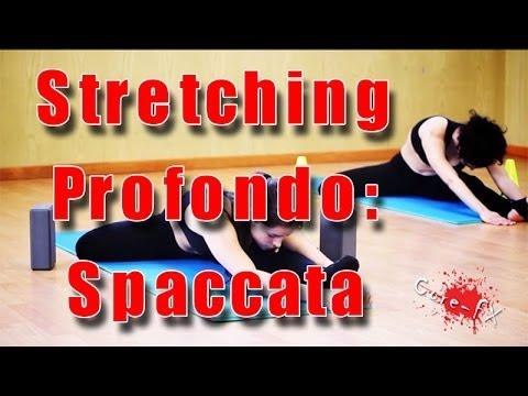 Trattamento di yoga di nuclei di ernie pulposi di sporgenze di osteochondroses