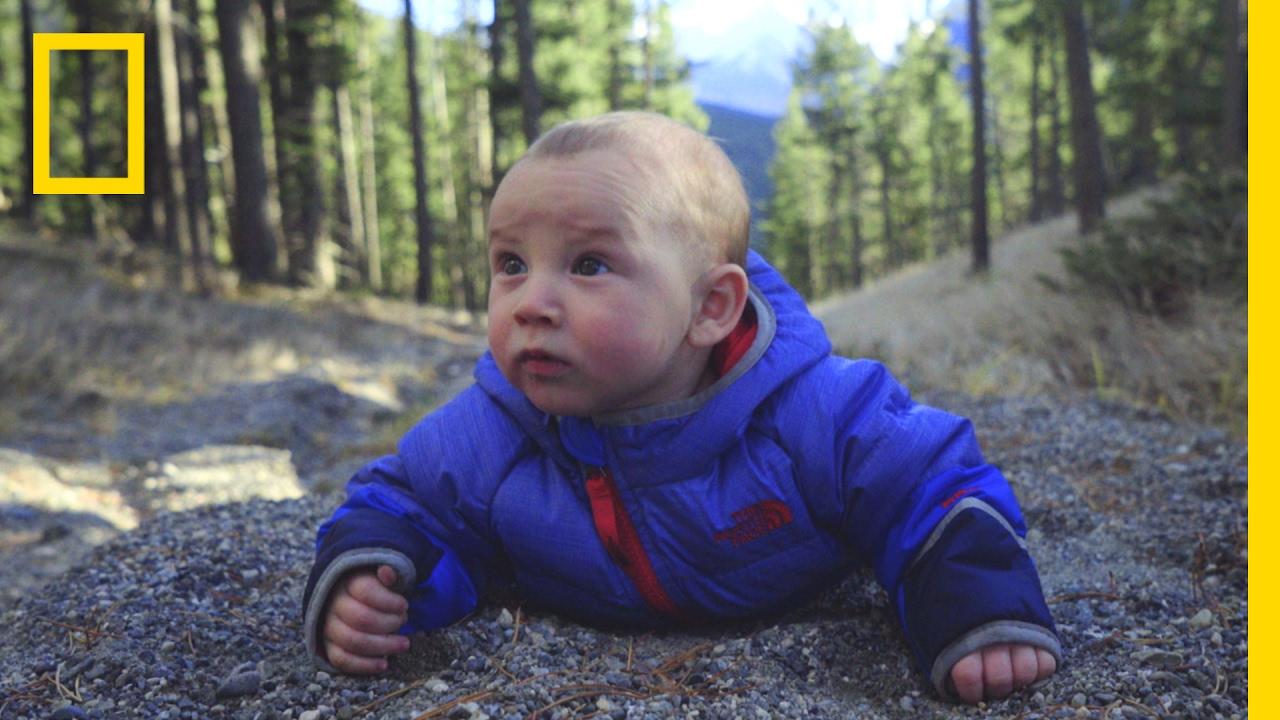 Watch Adorable Babies Go on a Hilarious High-Altitude Adventure | Short Film Showcase thumbnail