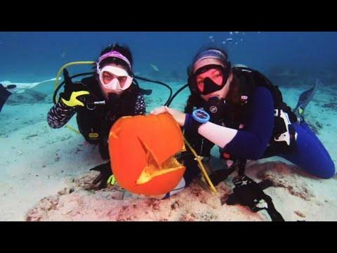 Χάλογουιν: η γιορτή των νεκρών και οι υποβρύχιες κολοκύθες…