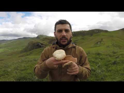 Come combattere contro un fungo che sta a gravidanza