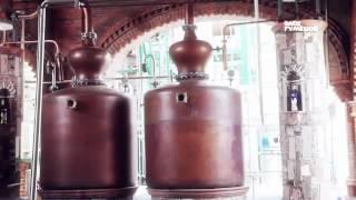 Bebidas de México - Tequila