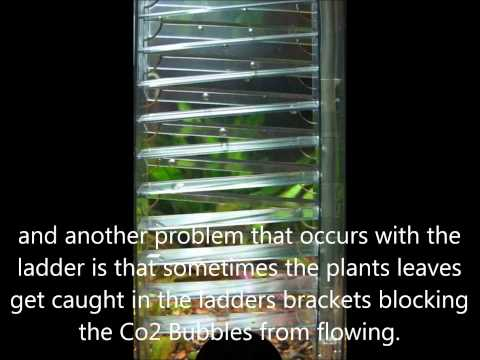 Best Co2 Diffusers Reviewed + Explained – Top 6 Diffusers for Planted Tank / Aquarium Co2 Systems