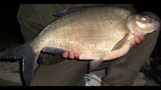 Открытие рыболовного сезона в астрахани