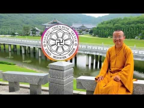 Vấn đáp phần 2: Thiền tịnh song tu (01/11/2009) Thích Nhật Từ