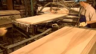 Производство шпона, фанеры и шпонированных дверей