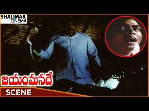 Jayam Manade Movie || Prabhakar Destroys Ranganath With Snake Bite || Krishna || Shalimarcinema