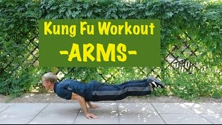 Epic Martial Arts Workout 2 of 4 - ARMS by Kung Fu & Tai Chi Center w/ Jake Mace