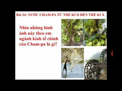 SỬ K6. BÀI 24. Nước Cham-Pa từ thế kỉ II đến thế kỉ X