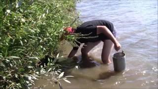 Рыбалка пущино ока