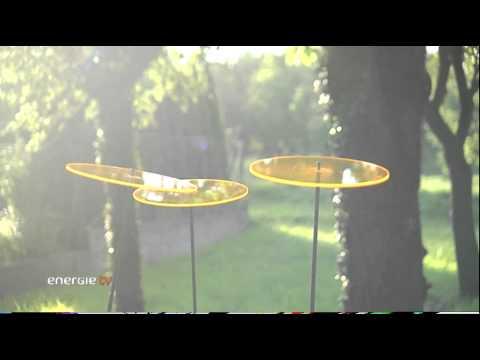 Sonnenfänger - Ein Stimmungsaufheller