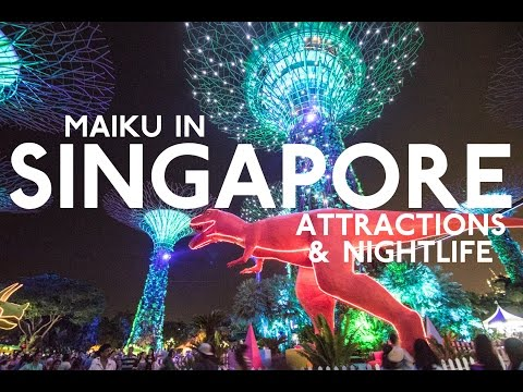 EXPLORING SINGAPORE CRAZY ATTRACTIONS & NIGHTLIFE!  – Singapore Trip Day 3