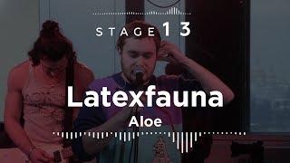 Latexfauna – Aloe  Stage13