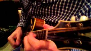 Mandolin Brothers: Chris Thile with the Lloyd Loar F5 (#75846)