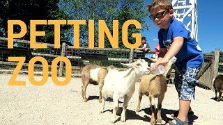 The Greatest Petting Zoo In All The Land