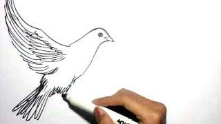 Menggambar Burung Dengan Mudah ฟร ว ด โอออนไลน ด ท ว ออนไลน