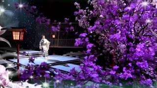 夜桜お七:坂本冬美