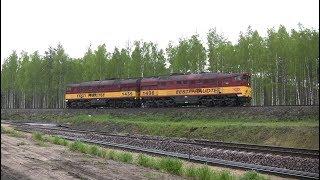 Тепловоз 2ТЭ116-875 на перегоне Орава-Печоры / 2TE116-875 between Orava and Pechory