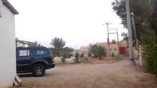 preview picture of video 'مزرعتنا القصيم -  #اوثال #القصيم #مزرعة our farm Qassiem'