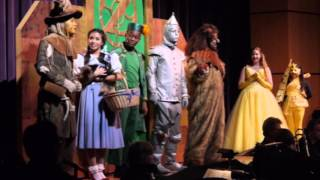 Wizard of OZ - Merry Old Land of OZ