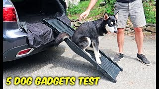 5 Dog Gadgets Put to the Test - Part 7