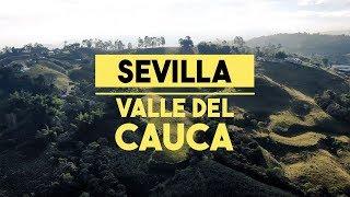 Sevilla, Valle del Cauca