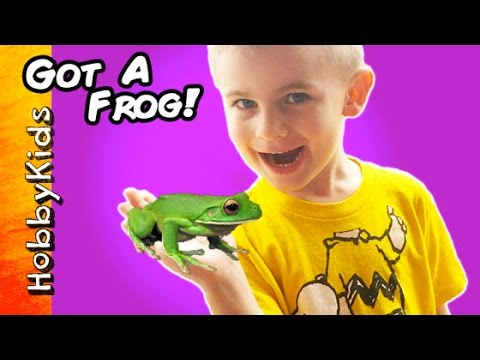 HobbyFrog Buys a Frog From Petco