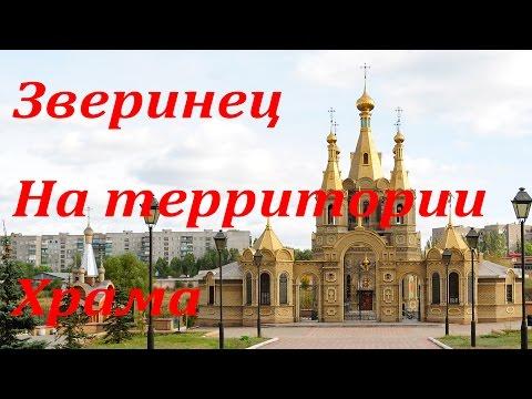Благовещенский храм г. ульяновск