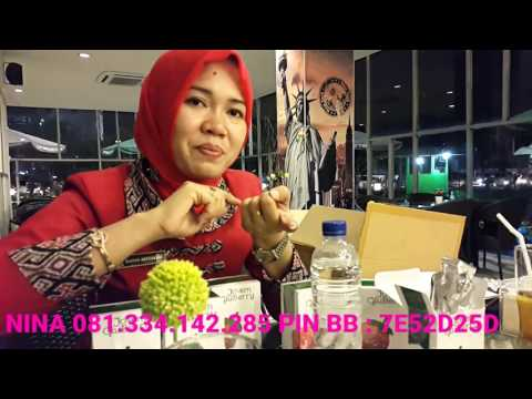 Video TESTIMONI PRODUCT GLUBERRY 4JOVEM - 081.334.142.28