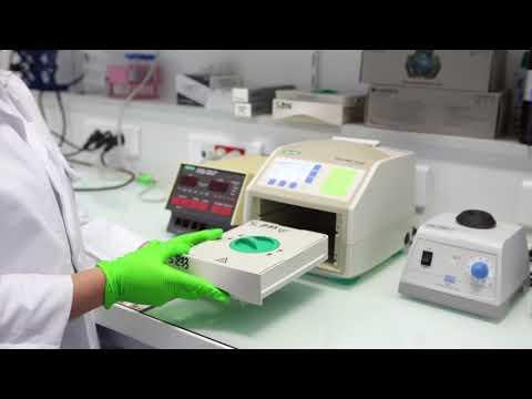 Les parasites de foie chez la personne selon lanalyse du sang