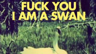 Fuck You I Am A Swan