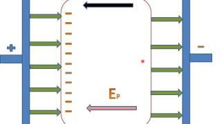 Electric Field Is Zero Inside A Conductor
