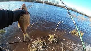 Отчет о рыбалке на усе