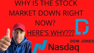 Let's Talk About The Nasdaq & Dow Jones  Why They Affect The Stock Market  Is The Market Crashing?
