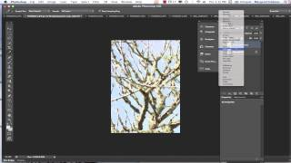Working with Filters and Blending Modes in Photoshop