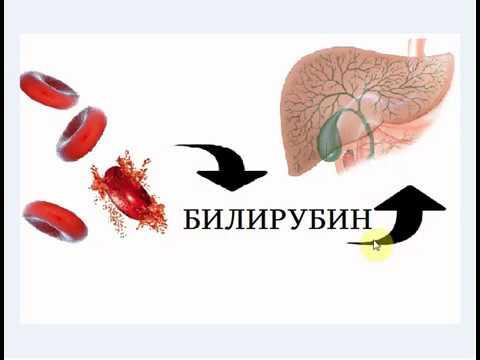 Профилактика гемоконтактных гепатитов и вич инфекций