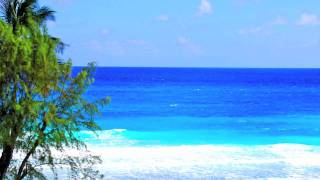 preview picture of video 'Margate Gardens Rental Units in Barbados'