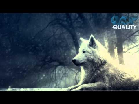 http://www.youtube.com/watch?v=1hrh9bj-pLE