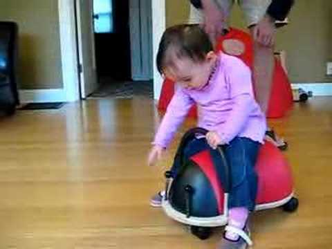 Playing with Wheely Bug