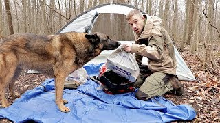 24h Walmart Camping/Survival Challenge $500 Spent on Walmart Camping Gear, Camping with my Dog