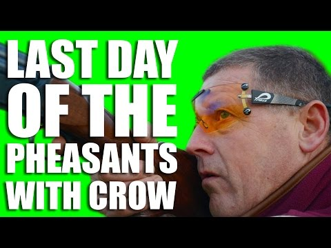 Last day of the pheasants