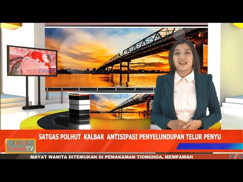 Antisipasi Maraknya Penyelundupan Telur Penyu, Satgas Polhut Kalbar akan Koordinasi dengan BKSDA Riau