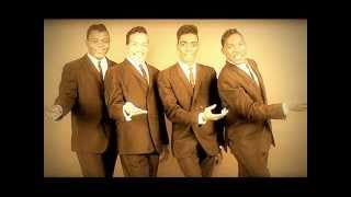 THE DRIFTERS - ''PLEASE STAY''  (1961)