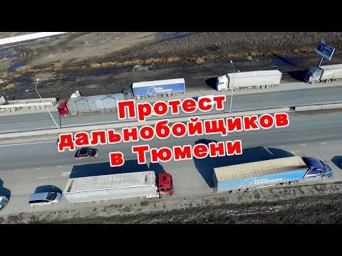 Заказать в москве конский возбудитель