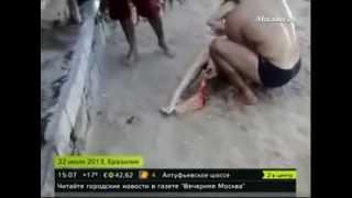 Cмерть девушки в пасти акулы   Страшное интересное и невероятное видео, явление