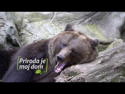 Priroda je moj dom - Nacionalni parkovi Crne Gore predstavili novi promotivni spot